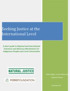 Seeking-International-Justice