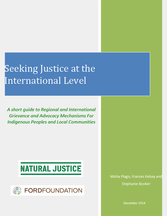 Seeking-International-Justice