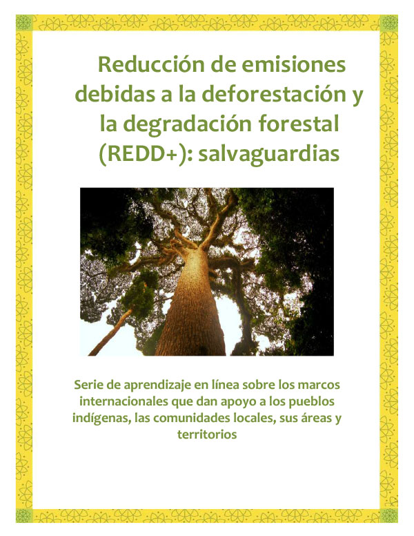 REDD-Safeguards-Spanish