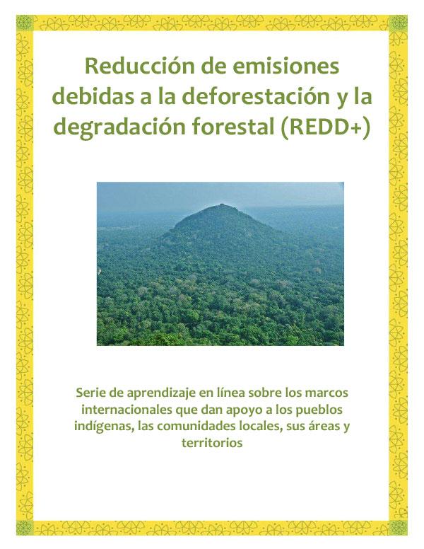 REDD_Spanish