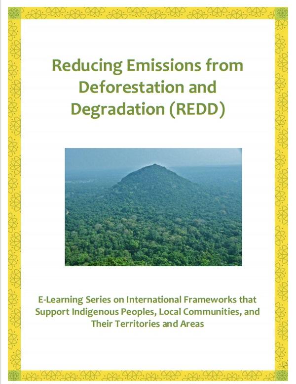 Reducing-Emissions-REDD