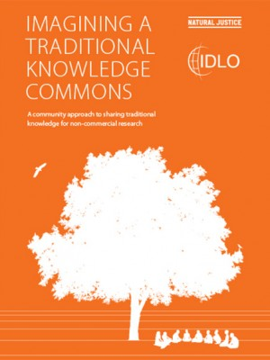 Imagining a Traditional Knowledge Commons