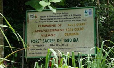 SNS-Benin