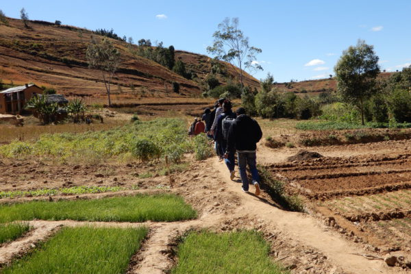 BCP_Madagascar_transect_08_2017