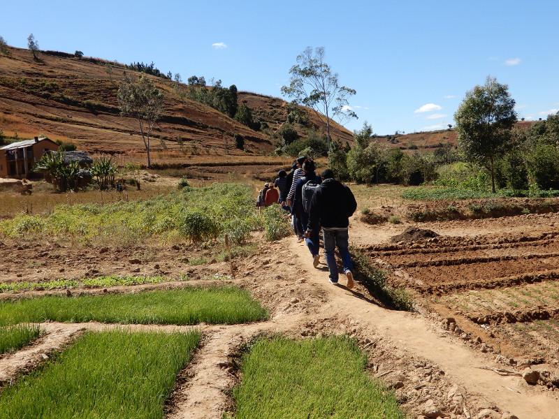 BCP_Madagascar_transect_08_2017