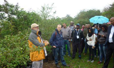 BeffelsdraaiCmmunityReforestation2