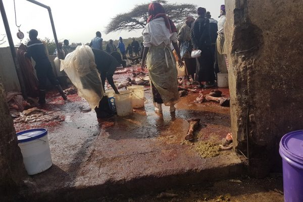 slaughterhouse_isiolo-eip